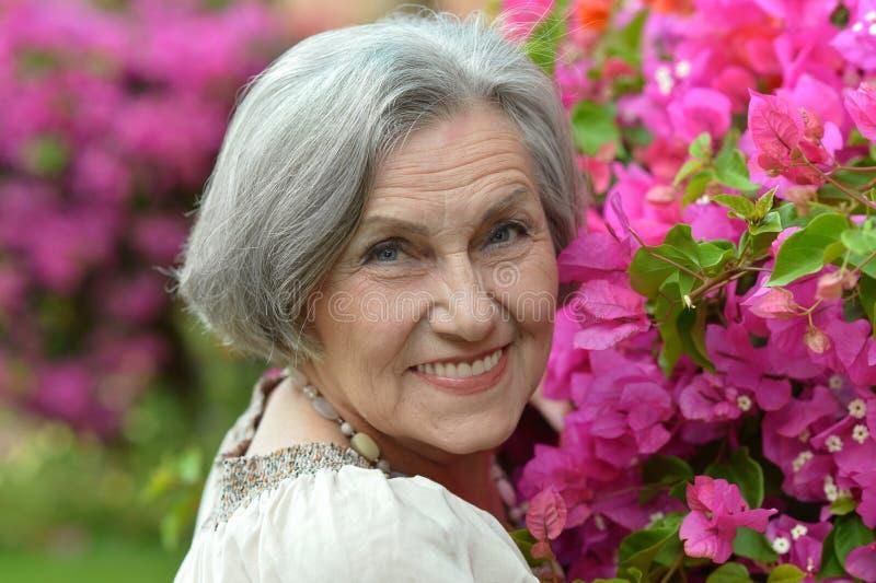 Ältere Frau auf Weg mit rosa Blumen lizenzfreies stockfoto