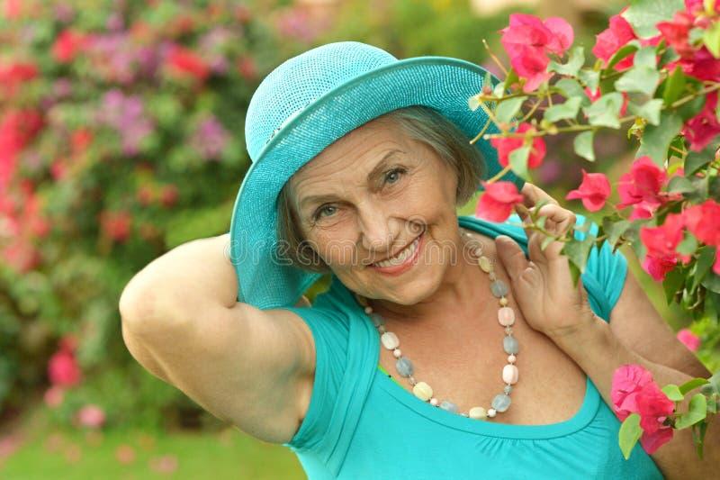 Ältere Frau auf Weg mit roten Blumen stockbild