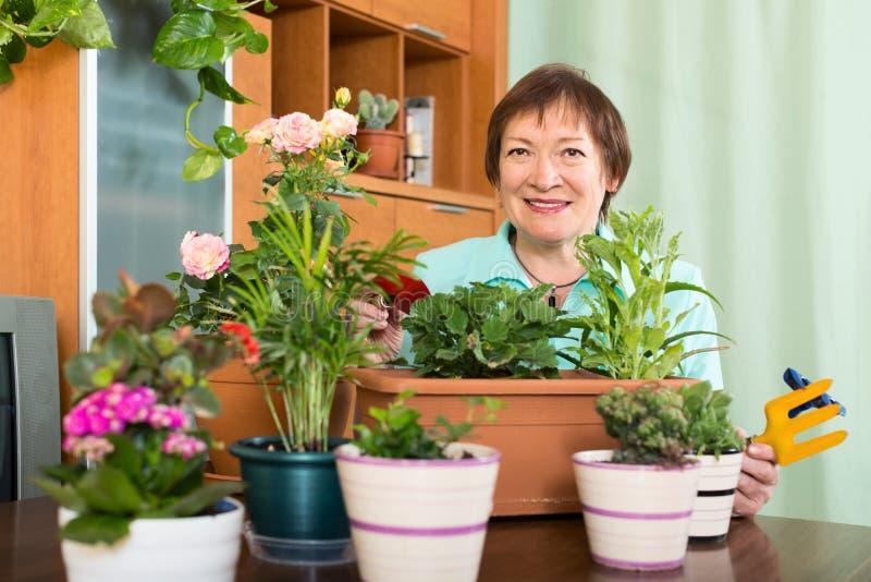 Ältere Frau, die Arbeit in ihrem kleinen Garten erledigt stockbild