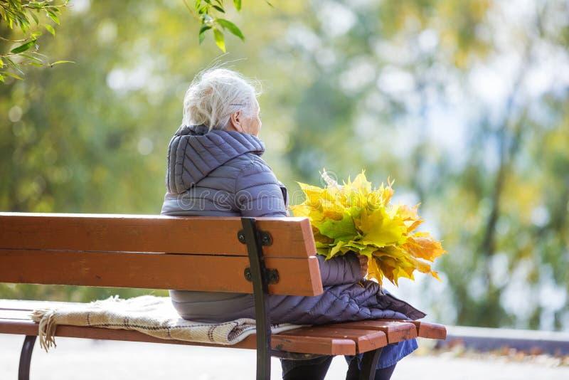 Ältere Frau, die auf Bank im Park sitzt lizenzfreie stockbilder