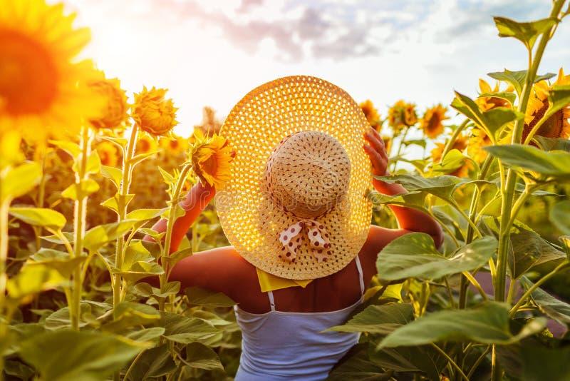 Ältere Frau, die in blühenden Sonnenblumenfeldholdinghut geht und Ansicht bewundert Krasnodar Gegend, Katya lizenzfreies stockbild