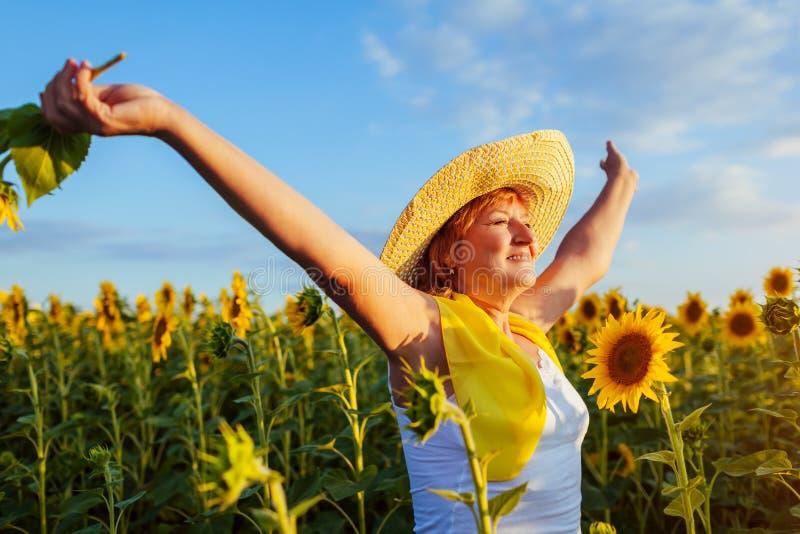 Ältere Frau, die in das blühende glaubende Sonnenblumenfeld freie und bewundern Ansicht geht Krasnodar Gegend, Katya stockbilder