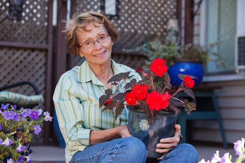 Ältere Frau, die eingemachte Anlage anhält lizenzfreies stockfoto