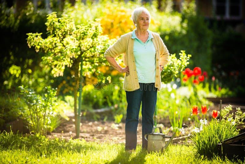 Ältere Frau, die einiges im Garten arbeitet in ihrem reizenden Garten tut lizenzfreie stockbilder