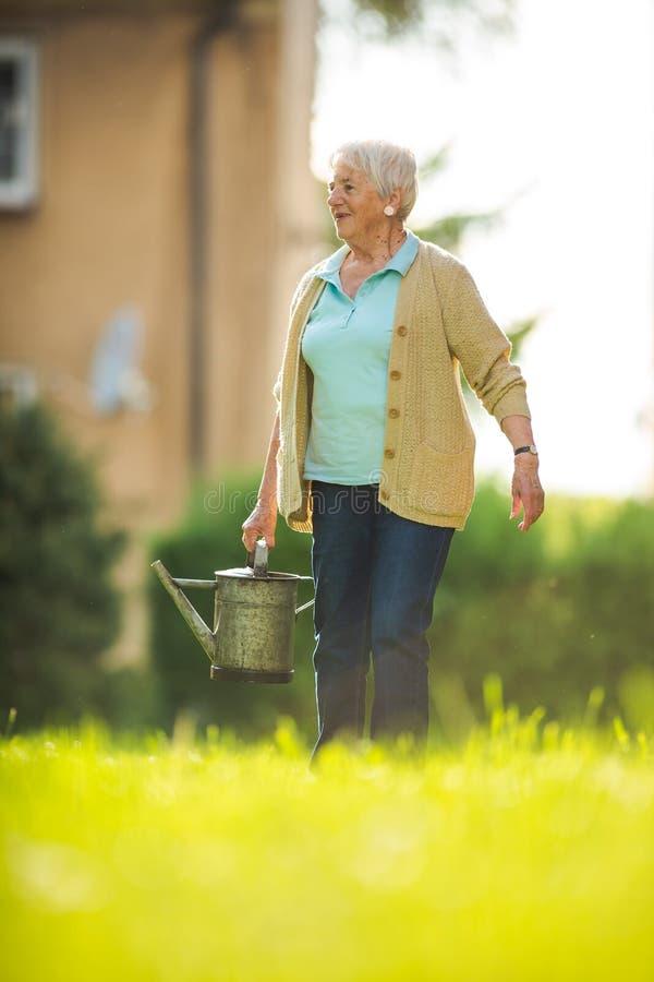 Ältere Frau, die einiges im Garten arbeitet in ihrem reizenden Garten tut lizenzfreies stockbild
