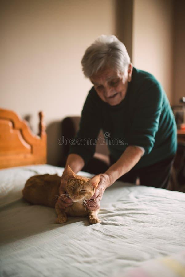 Ältere Frau, die ihre Katze auf dem Bett streichelt lizenzfreies stockbild