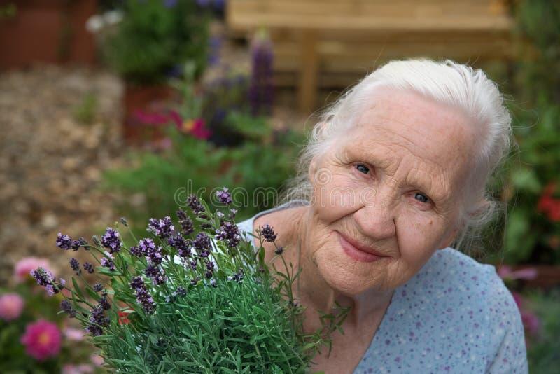 Ältere Frau, die Lavendel hält lizenzfreie stockbilder