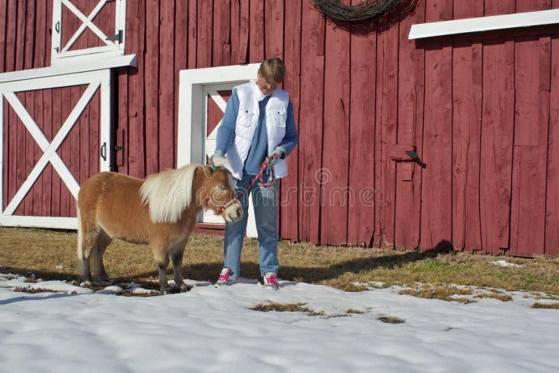 Ältere Frau, die Minipferd Petting ist stockfoto