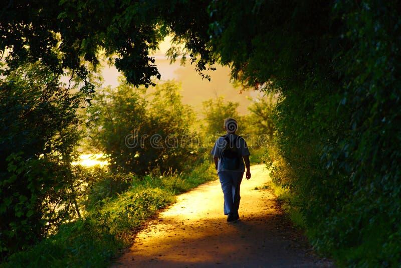 Ältere Frau, die in Sonnenuntergang geht lizenzfreie stockbilder