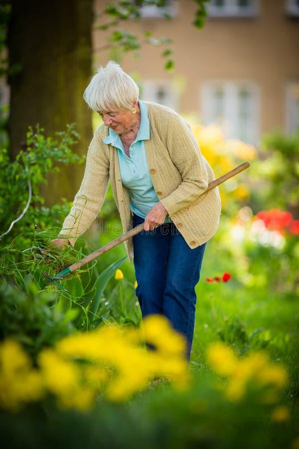 Ältere Frau im Garten lizenzfreies stockfoto