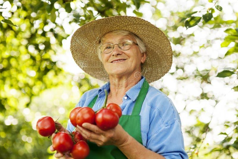Ältere Frau im Garten lizenzfreies stockbild