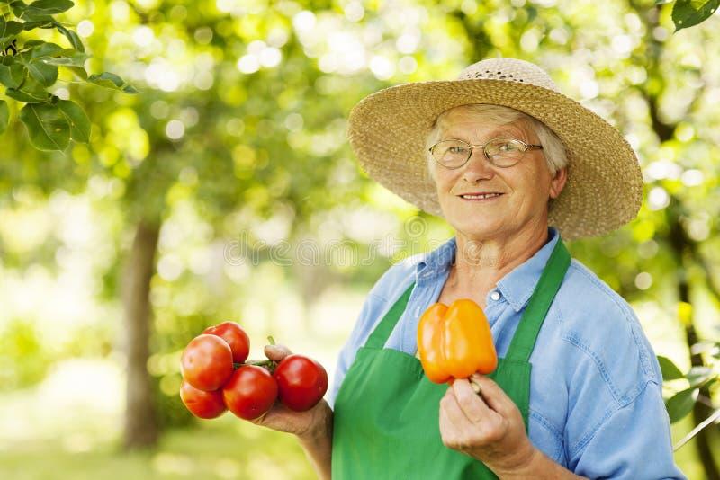 Ältere Frau im Obstgarten stockfotografie