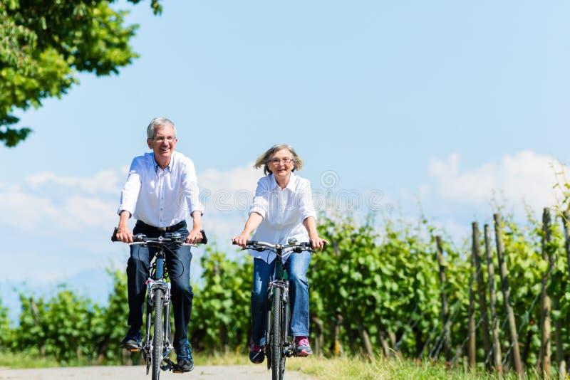 Ältere Frau und Mann, die Picknick auf Wiese hat stockfotos