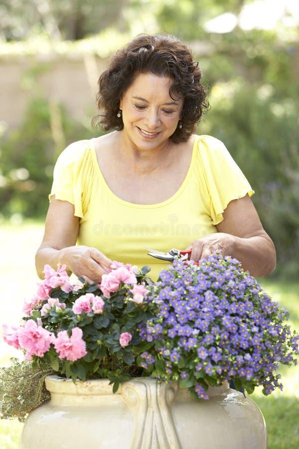 Ältere Frauen-Gartenarbeit lizenzfreies stockbild