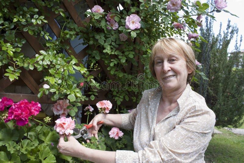 Ältere Frauen-Gartenarbeit stockfotografie