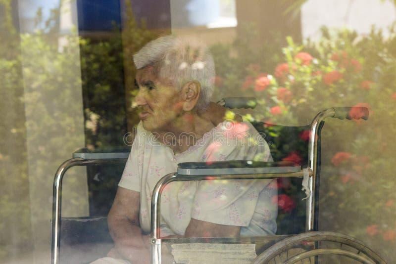 Ältere Frauenrollstuhlblumen stockfoto