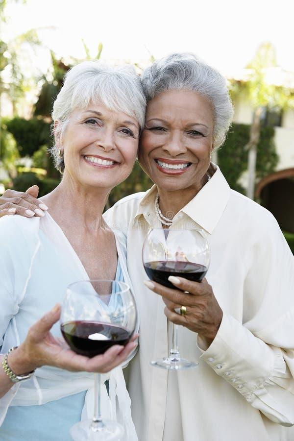 Ältere Freunde mit Wein-Gläsern draußen lizenzfreies stockfoto