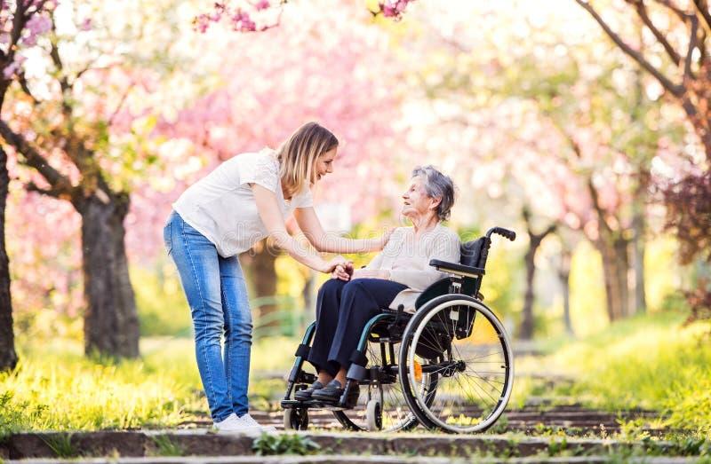 Ältere Großmutter im Rollstuhl mit Natur der Enkelin im Frühjahr stockbild
