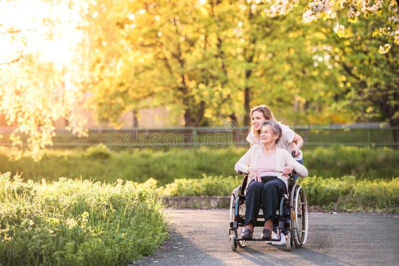 Ältere Großmutter im Rollstuhl mit Natur der Enkelin im Frühjahr stockfotografie