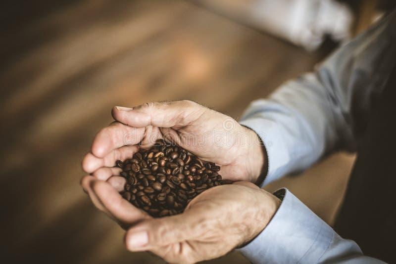 Ältere Männer in der Hand, die ganzes Korn des Kaffees halten lizenzfreie stockfotografie