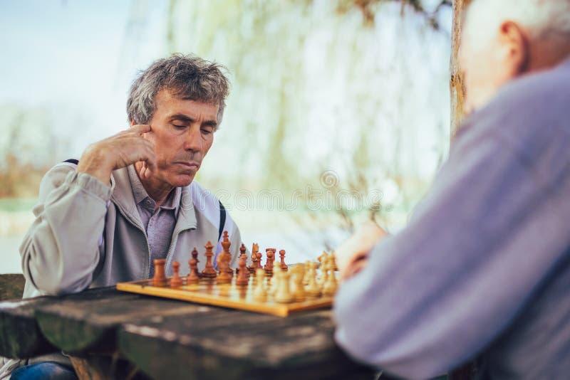 Ältere Männer, die Spaß haben und Schach am Park spielen lizenzfreie stockbilder