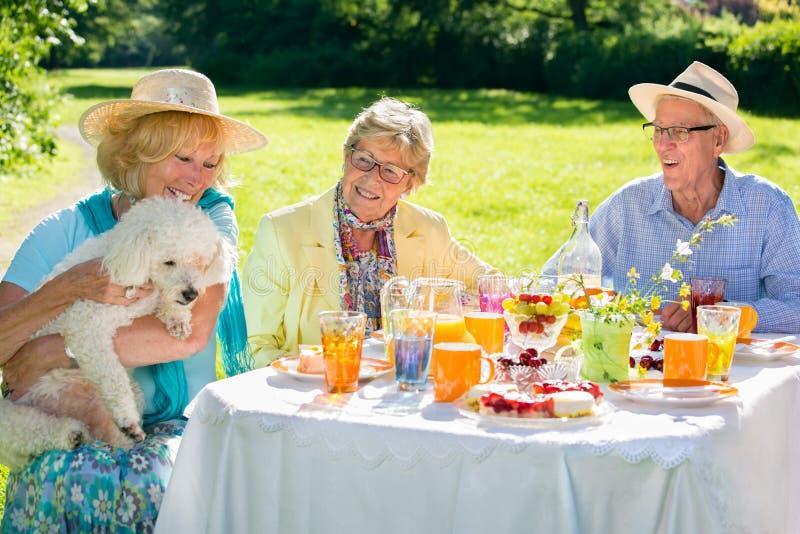 Ältere Menschen, die mit Haustier am Picknicktisch sitzen lizenzfreies stockbild