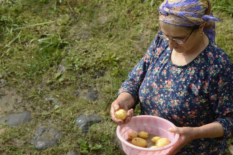 Ältere moslemische Frau, die einen kleinen rosa Waschbottich frisches pota hält stockfotografie