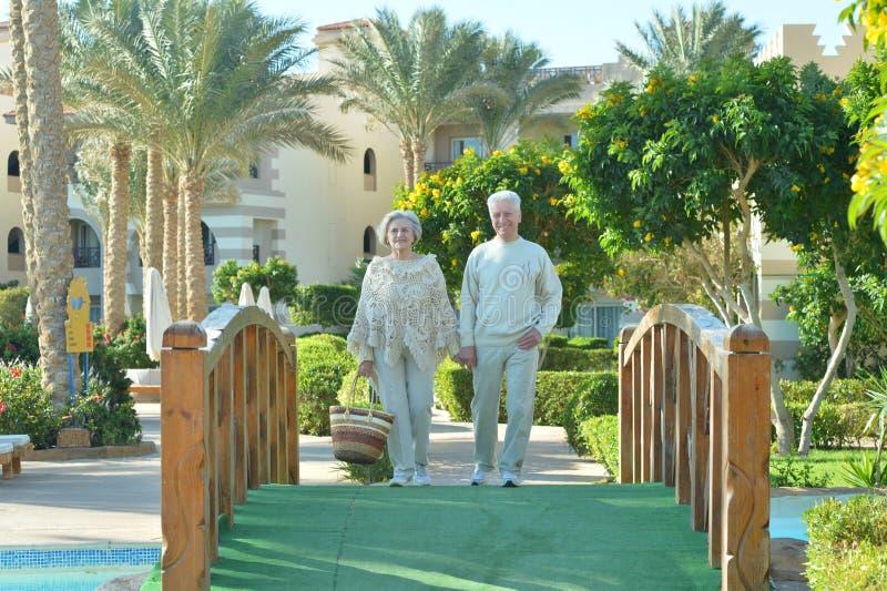 Ältere Paare auf Brücke stockbild