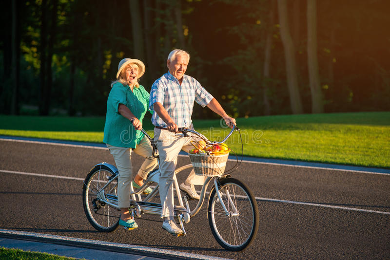 Ältere Paare auf Landfahrradfahrt lizenzfreie stockfotos
