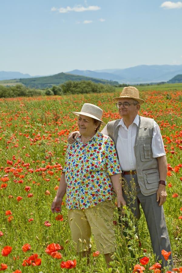 Ältere Paare auf Mohnblumefeld am Frühsommer lizenzfreie stockbilder