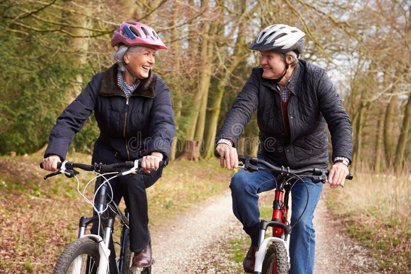 Ältere Paare auf Zyklus-Fahrt in der Winter-Landschaft stockfotos