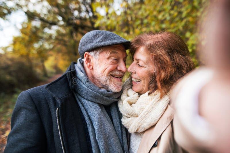 Ältere Paare in der Liebe in einer Herbstnatur, selfie nehmend lizenzfreies stockfoto