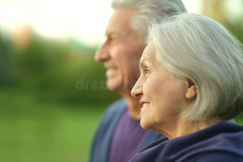 Ältere Paare an der Natur lizenzfreie stockfotos