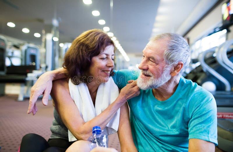 Ältere Paare in der Turnhalle, die vor den Tretmühlen, stehend sitzt still lizenzfreies stockbild