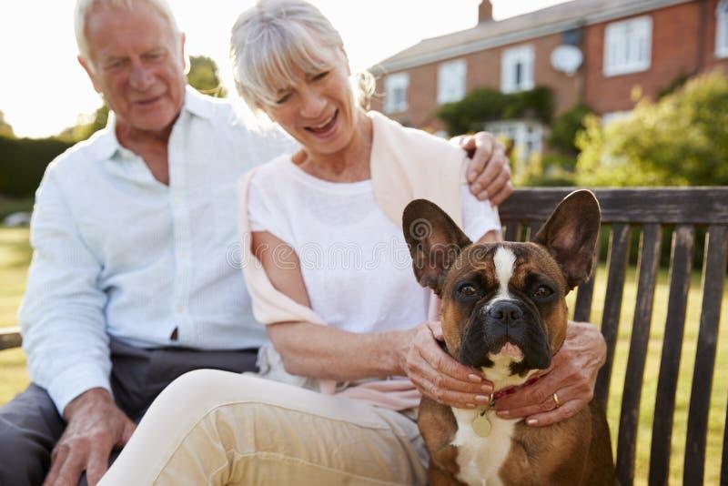 Ältere Paare, die auf Garten-Bank mit Haustier-französischer Bulldogge sitzen stockbilder