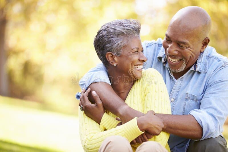 Ältere Paare, die in Autumn Landscape sich entspannen stockbild