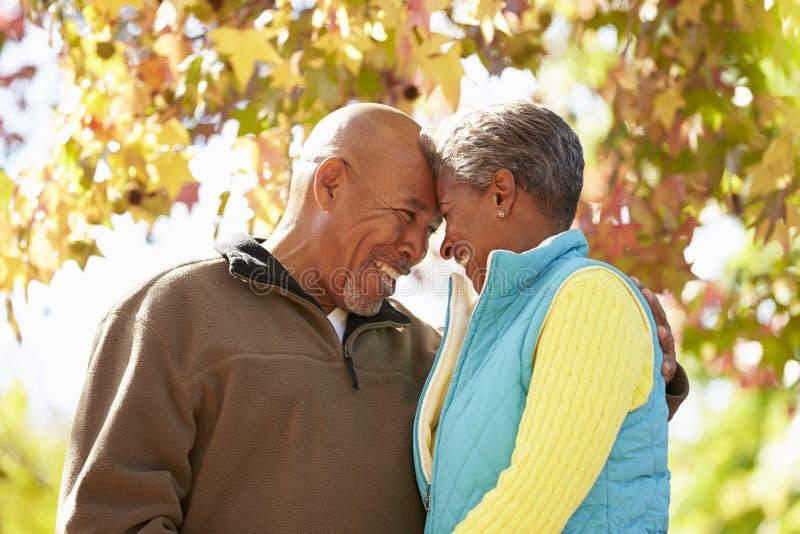 Ältere Paare, die durch Autumn Woodland gehen lizenzfreies stockbild