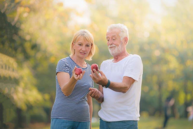 Ältere Paare, die im Garten bei Sonnenuntergang sich entspannen Konzeptpaarältestliebe lizenzfreies stockfoto