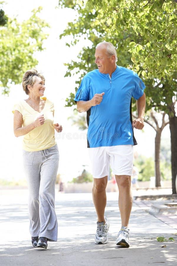 Ältere Paare, die im Park rütteln lizenzfreie stockbilder