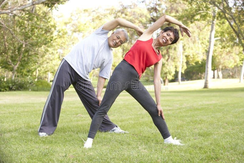 Ältere Paare, die im Park trainieren lizenzfreie stockfotografie