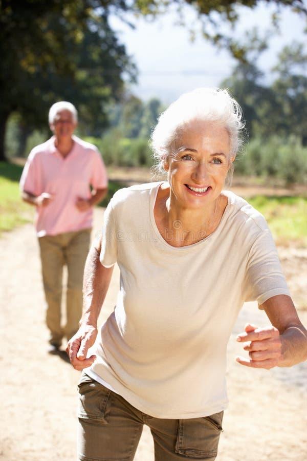 Ältere Paare, die in Land laufen lizenzfreie stockfotografie