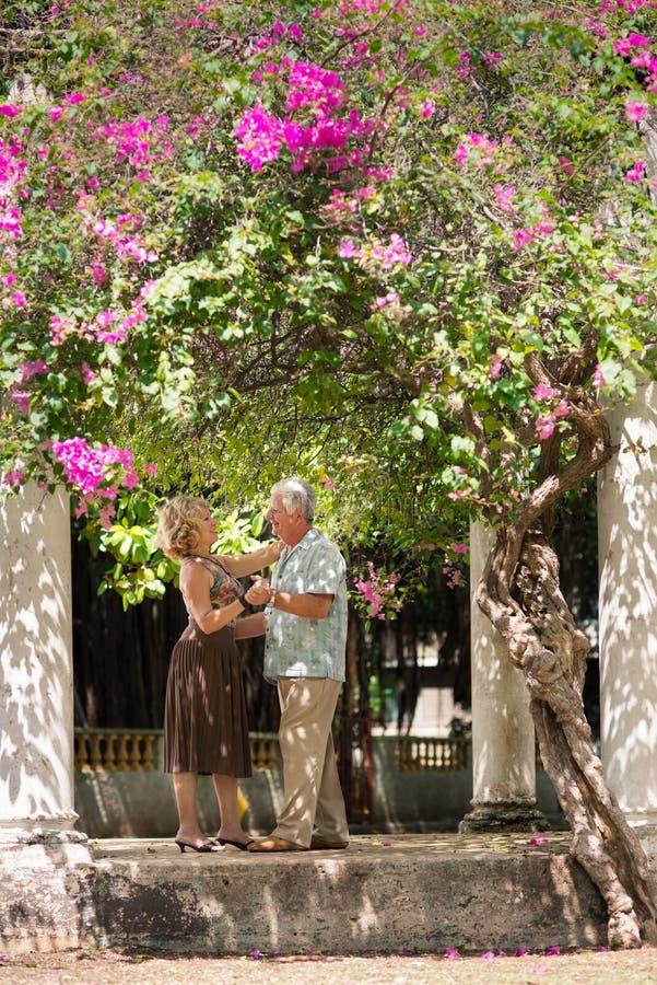 Ältere Paare, die lateinamerikanischen Tanz für Spaß tanzen stockfotografie