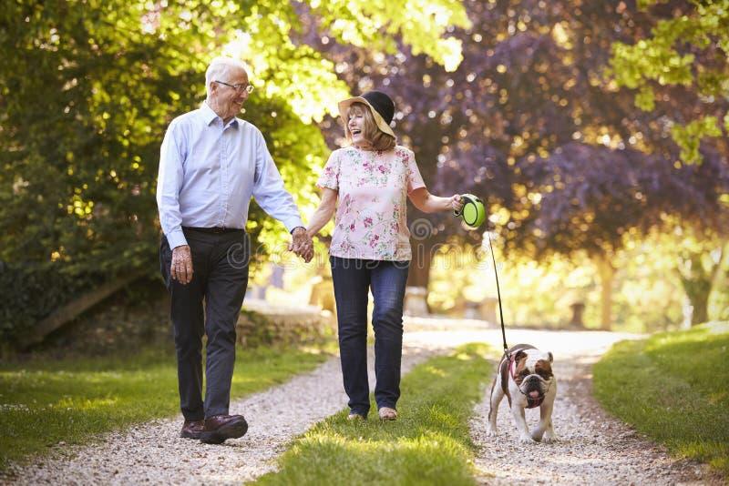 Ältere Paare, die mit Haustier-Bulldogge in der Landschaft gehen stockfotografie