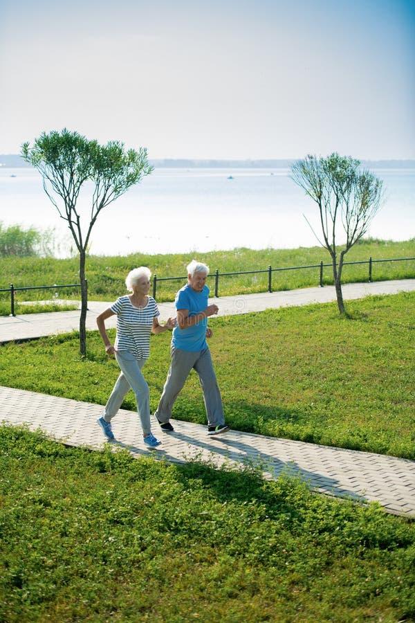 Ältere Paare, die in Park laufen stockbilder