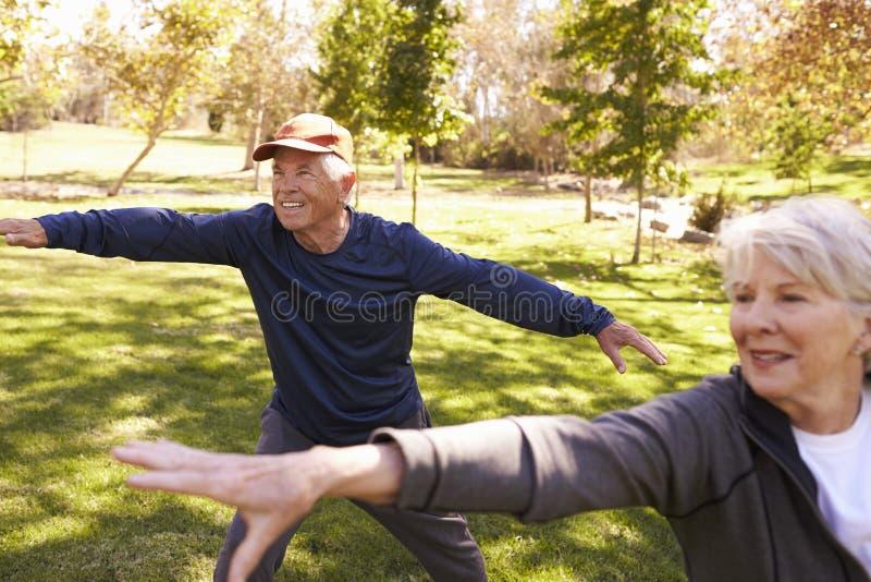 Ältere Paare, die Tai Chi Exercises Together In-Park tun lizenzfreie stockfotografie