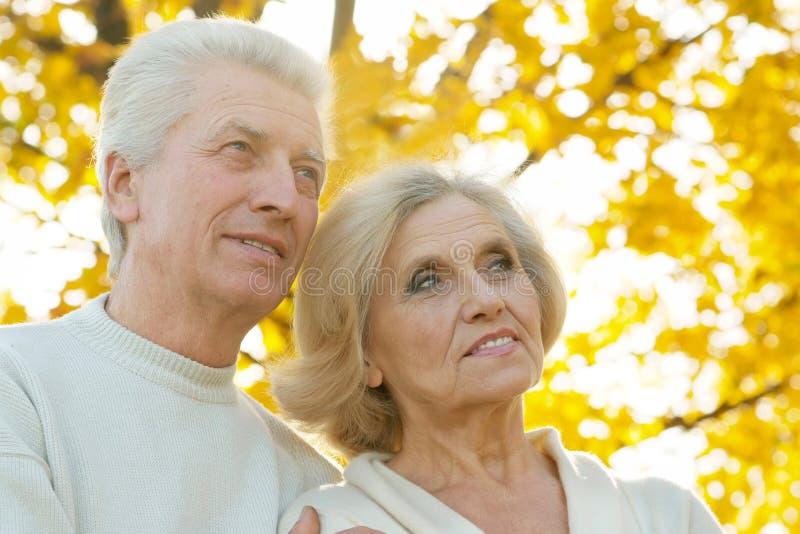 Ältere Paare im Herbstpark stockbild