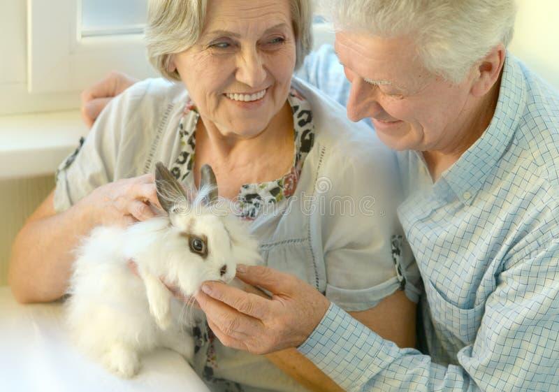Ältere Paare mit einem Kaninchen stockfotografie
