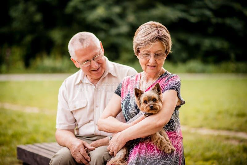 Ältere Paare mit Hund stockfotografie