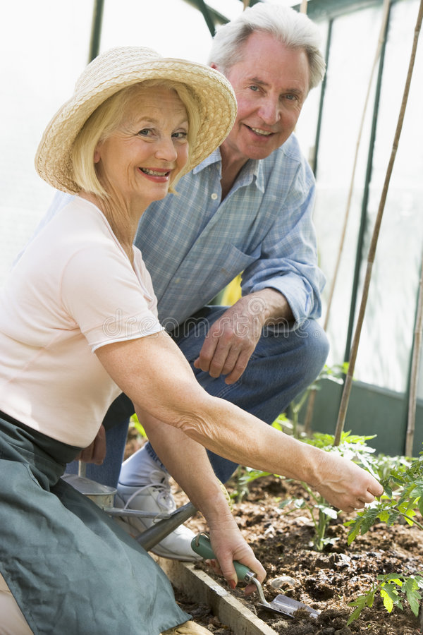 Ältere Paargartenarbeit stockfoto