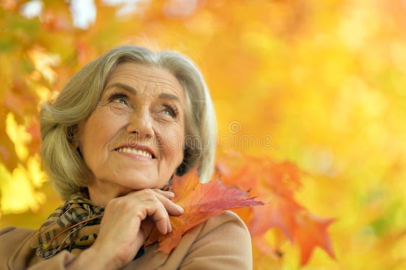 Ältere Schönheitsaufstellung stockbild